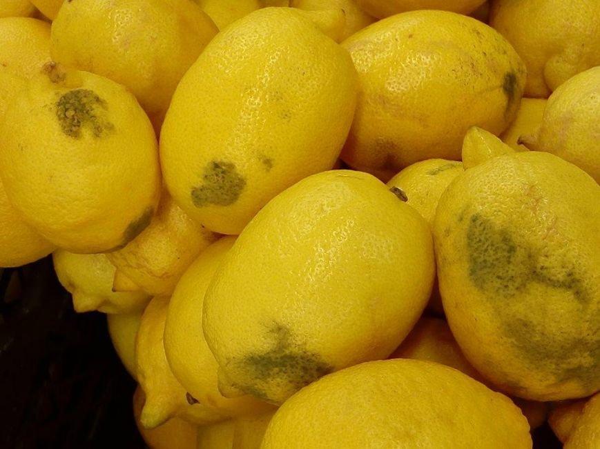 Тернополянам в магазині пропонують лимони з пліснявою і гнилу хурму (фото) (фото) - фото 1