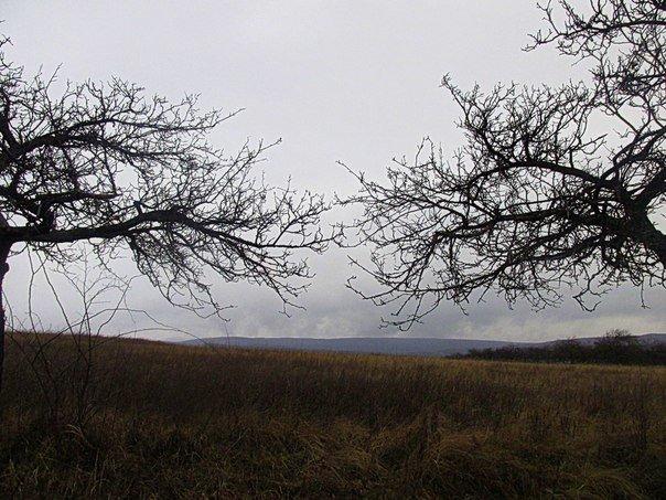 Що Ви знаєте про Горя́нську рото́нду на околицях Ужгорода (ФОТО) (фото) - фото 6