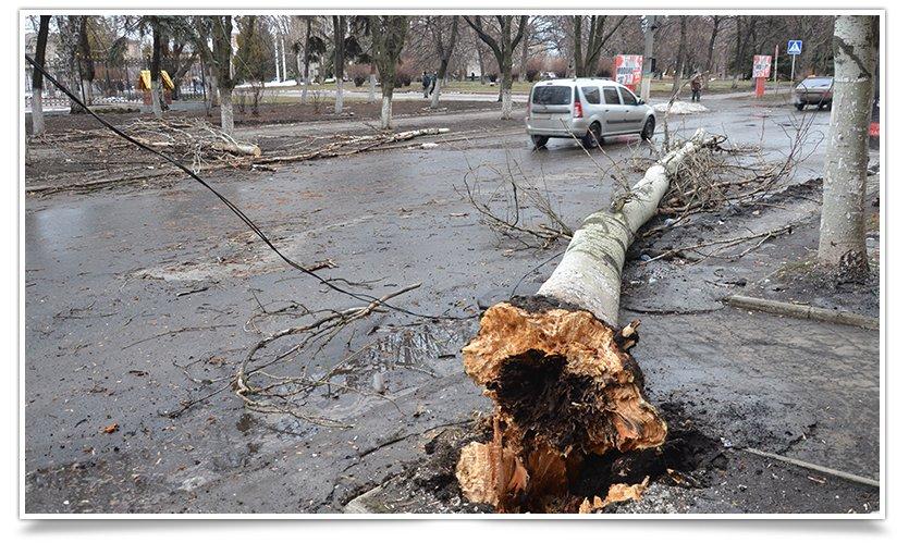 Ночью в Славянске прошёл ураган, повалены деревья и заборы (фото) - фото 1