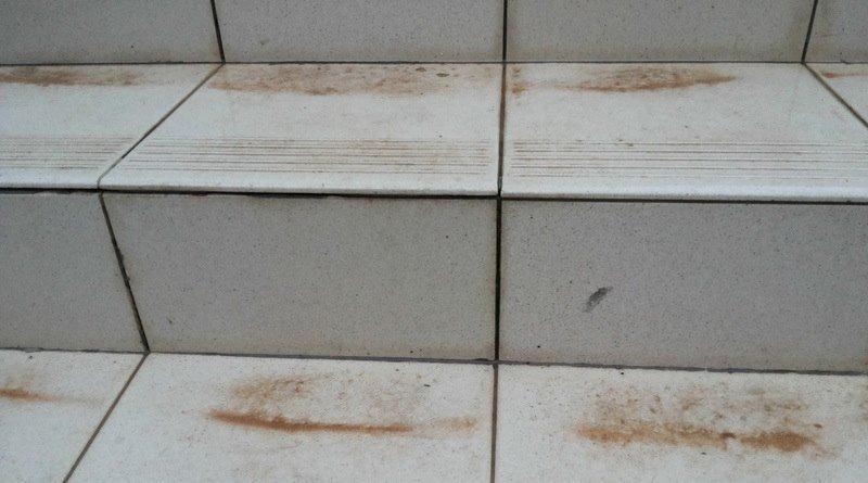В Симферополе выпал дождь с песком (ФОТО) (фото) - фото 3