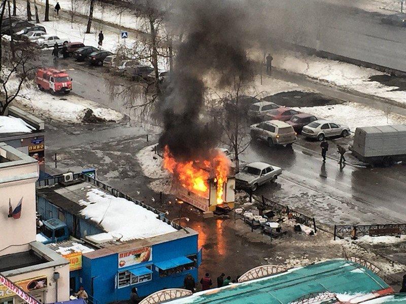 Что это было? Увольнения и борьба с фрилансом в кризис по-белгородски, сельские пати и избиения в полиции минувшей недели (фото) - фото 8