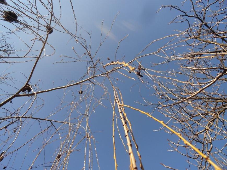 Фотопроект «Внезапная весна» (фото) - фото 12