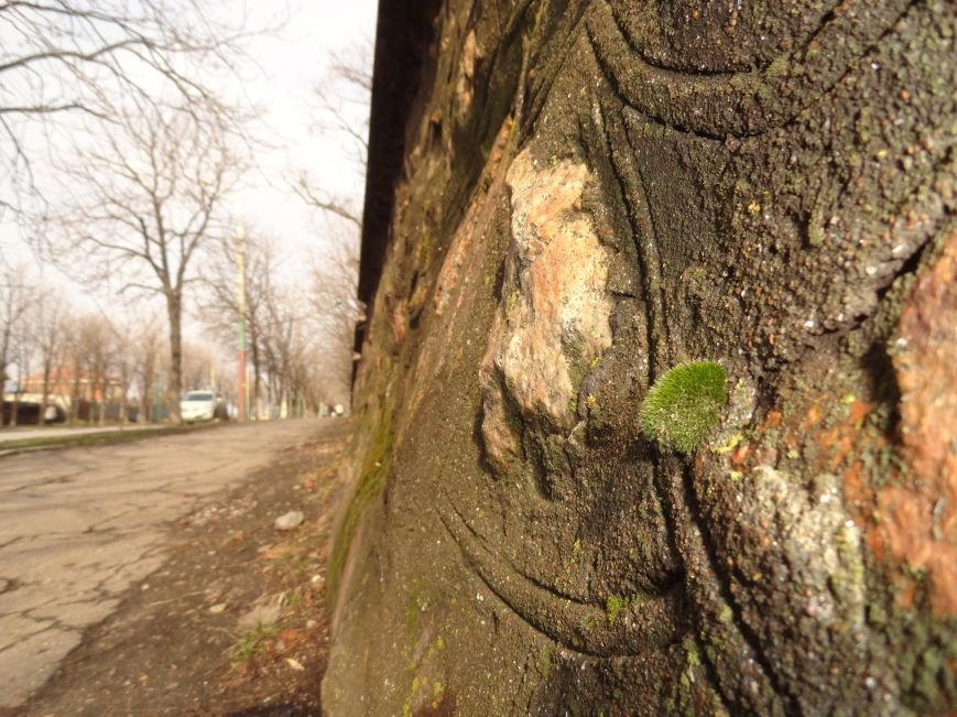Фотопроект «Внезапная весна» (фото) - фото 15