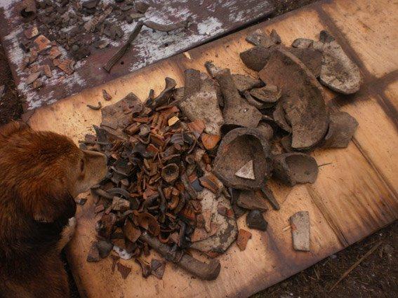 На Николаевщине поймали «черных» археологов (ФОТО) (фото) - фото 2