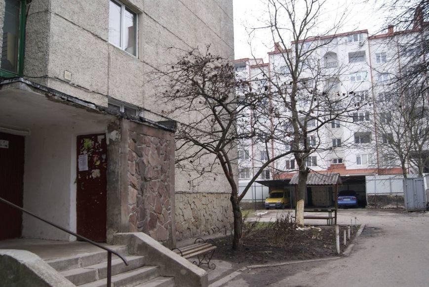 У Тернополі невідомі «скалічили» дерево (фото) (фото) - фото 1