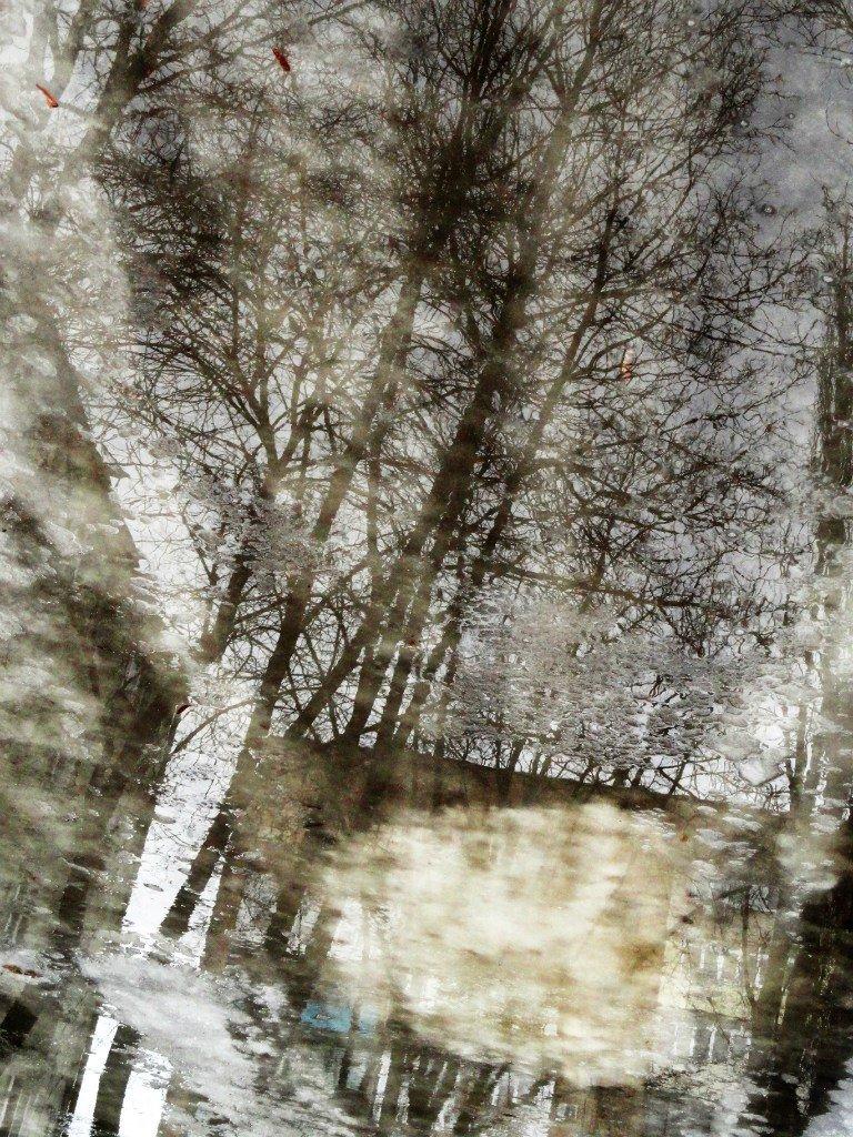 Фотопятница: «Отражение. Параллельная реальность» (фото) - фото 3