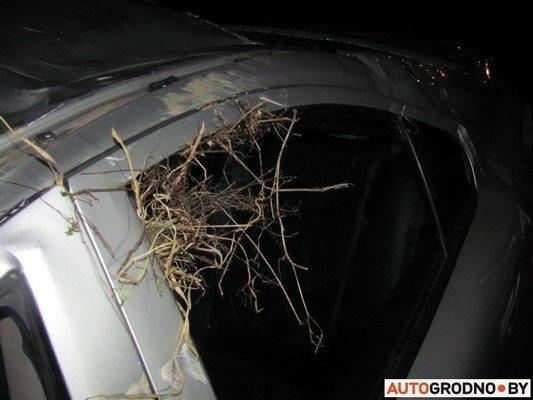 В Гродно Volvo скатилась с 12-метрового откоса и вылетела на железнодорожные рельсы (Фото), фото-6