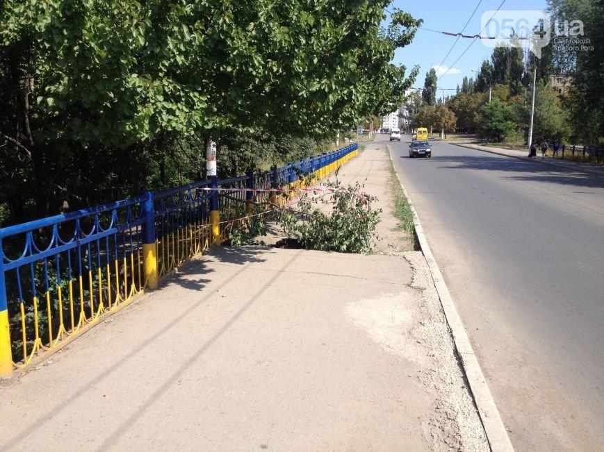 Почему обрушился мост в Кривом Роге: хронология, версии (фото) - фото 6