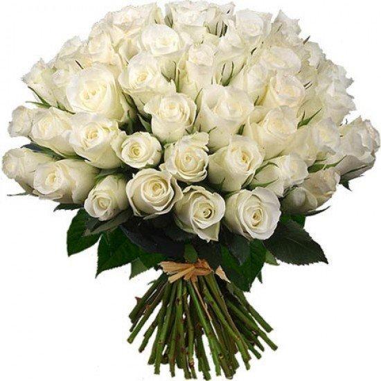 роза белая_букет_30 грн