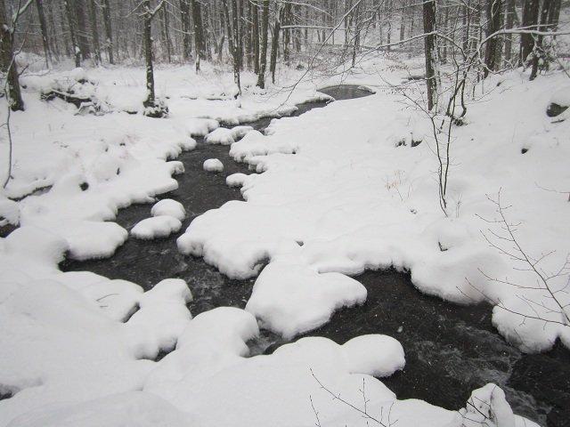 Гора «Синяк», Закарпатская область (ФОТО), фото-5