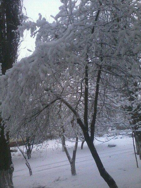 Луганчане в соцсетях показали, как выглядит город сегодня  (ФОТО, ВИДЕО) (фото) - фото 1