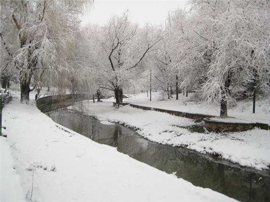 В Симферополе снегопад: на дорогах пробки, маршруток не дождаться, коммунальщики заверяют — работают в усиленном режиме (ФОТО, ВИДЕО) (фото) - фото 5