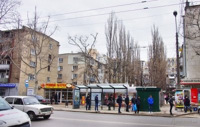 В Одессе владельцы МАФов спилили несколько деревьев (ФОТО) (фото) - фото 1