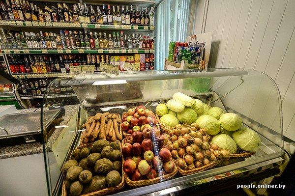 Жизнь в гродненском колхозе «Квасовка»: зарплата 7 млн и свинина за 60 тыс. (Фото), фото-31
