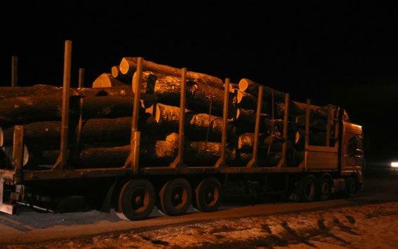 На Полтавщине милиция задержала грузовик с дубом неизвестного происхождения (ФОТО) (фото) - фото 1