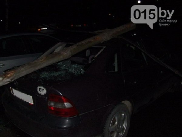 Дорожные аварии в Гродно: 9 улиц, по которым лучше не ездить (Фото, Видео) (фото) - фото 6
