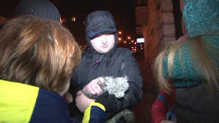 Як у Львові рятувальники кицьку з дерева знімали (ФОТО), фото-2