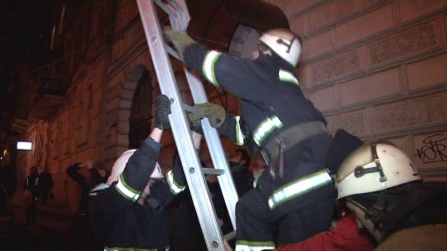 Як у Львові рятувальники кицьку з дерева знімали (ФОТО), фото-1