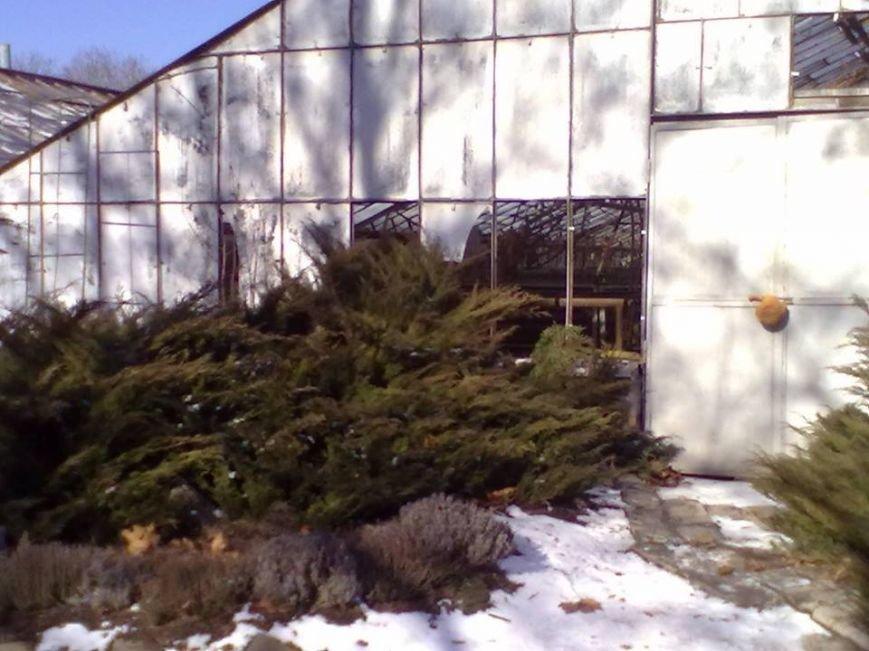 В Донецке под обстрел попал Ботанический сад (ФОТО) (фото) - фото 1