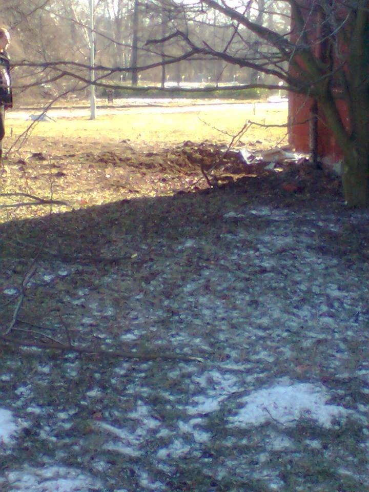 В Донецке под обстрел попал Ботанический сад (ФОТО) (фото) - фото 3