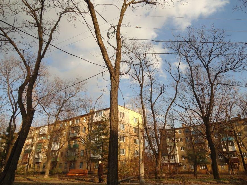 В Мариуполе энергетики передают ток потребителям с помощью деревьев (ФОТОФАКТ) (фото) - фото 1