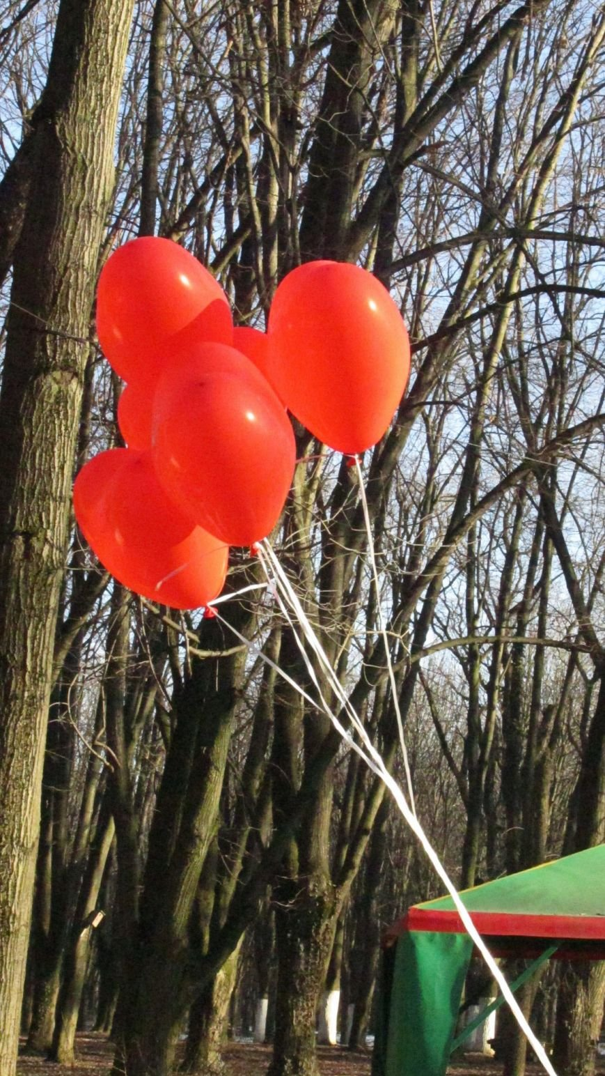 В Ужгороді свято було! Як пройшла Ужгородська Палачінта (ФОТО РЕПОРТАЖ) (фото) - фото 48
