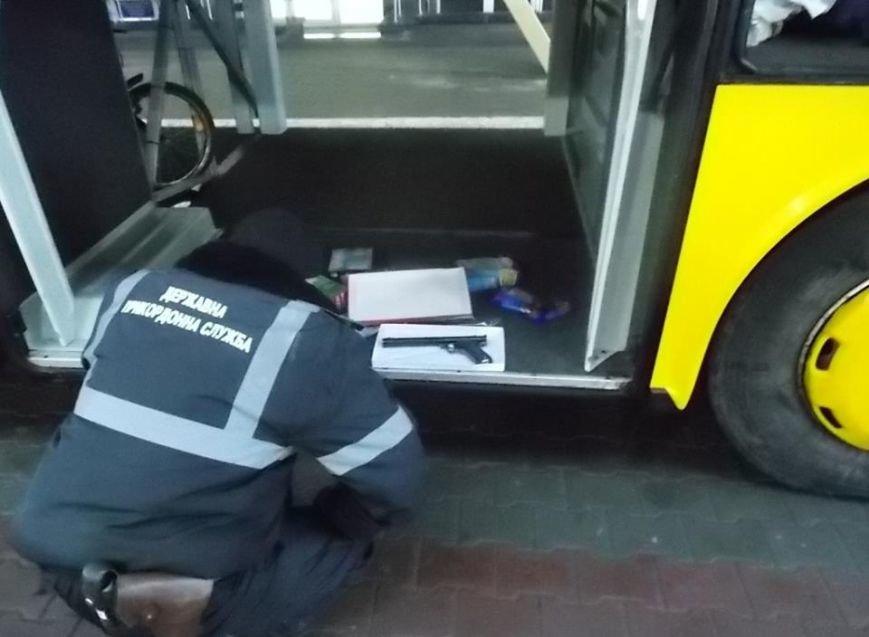 Службовий пес у рейсовому автобусі серед багажу знайшов зброю (ФОТО), фото-1