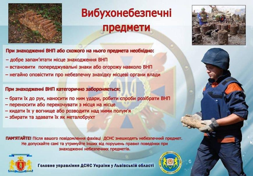 У підвалі львівського будинку люди знайшли дві гранати (ФОТО), фото-3