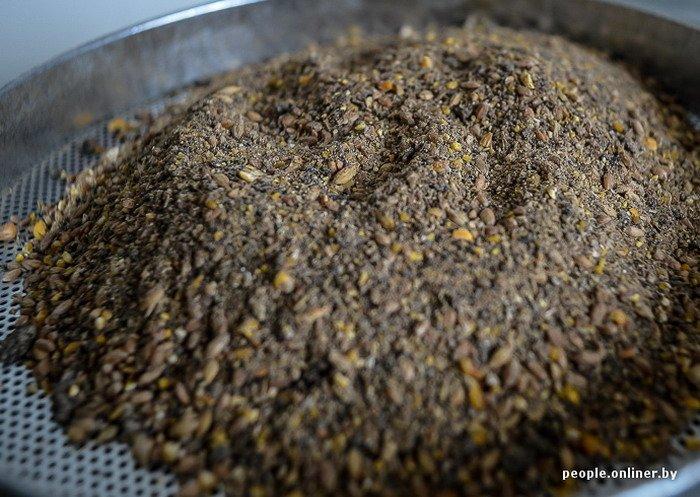 Фоторепортаж: как производят гродненские яйца под марками «Боярские», «Большие» и «Ну очень большие», фото-11