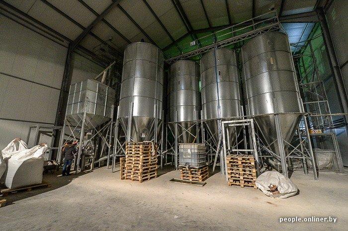 Фоторепортаж: как производят гродненские яйца под марками «Боярские», «Большие» и «Ну очень большие», фото-7
