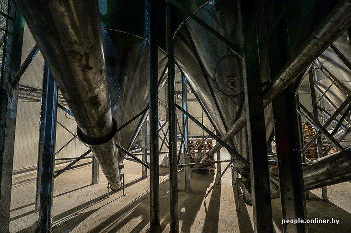Фоторепортаж: как производят гродненские яйца под марками «Боярские», «Большие» и «Ну очень большие», фото-9
