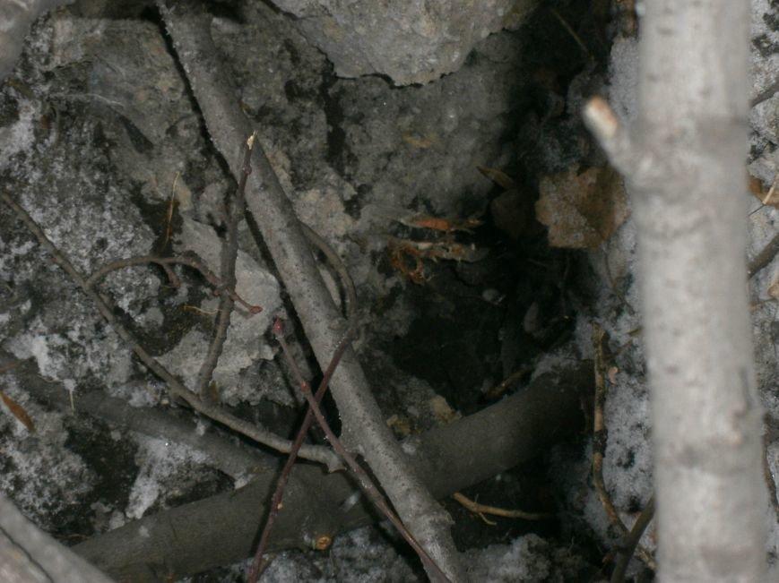 В Горняке восстанавливают пострадавшие постройки (ФОТОРЕПОРТАЖ) (фото) - фото 37
