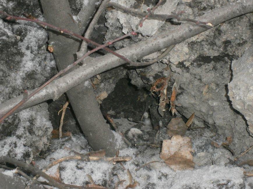В Горняке восстанавливают пострадавшие постройки (ФОТОРЕПОРТАЖ) (фото) - фото 36