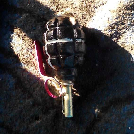 На Николаевщине поймали 20-летнего парня с боевой гранатой (ФОТО) (фото) - фото 2