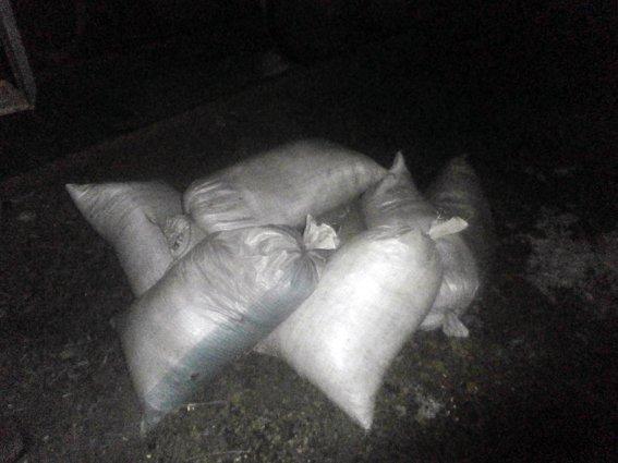 На станции Гродовка пытались украсть 700 кг угля (фото) - фото 2