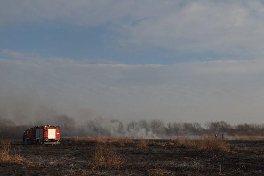 Губернатор Львівщини закликав священників повпливати на львів'ян, які палять суху траву (ФОТО), фото-1