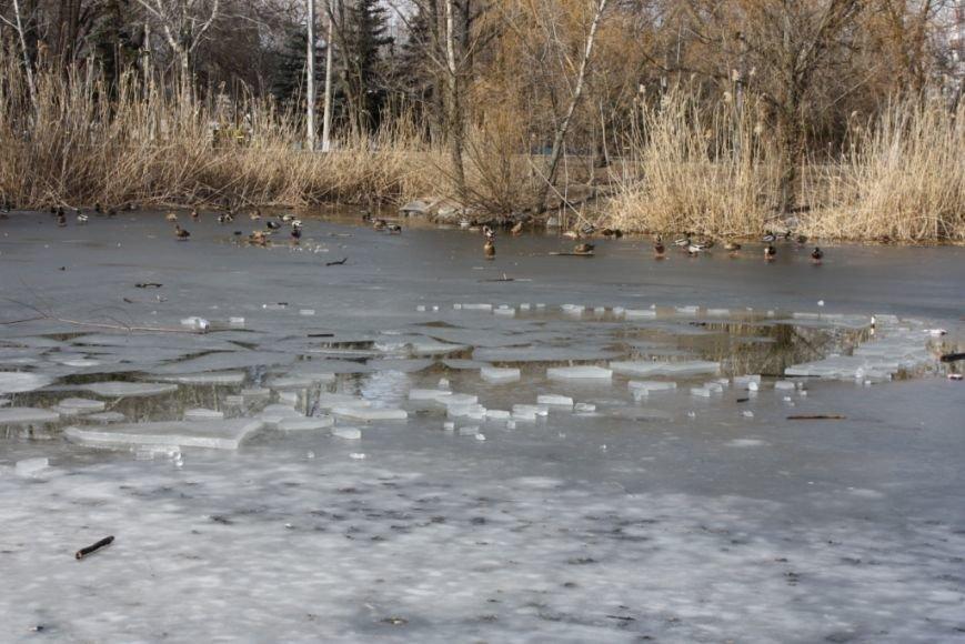 В Запорожской «Дубовке» подростки провалились под лед (ФОТО, ВИДЕО) (фото) - фото 1