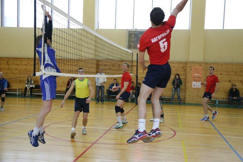 Окружной турнир по волейболу в Домодедово собрал 11 команд (фото) - фото 1