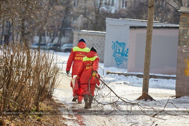 В Харькове стартовал двухмесячник благоустройства «Зеленая весна» (ФОТО) (фото) - фото 4