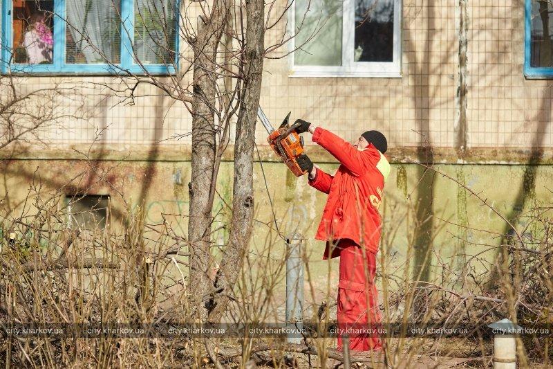 В Харькове стартовал двухмесячник благоустройства «Зеленая весна» (ФОТО) (фото) - фото 3