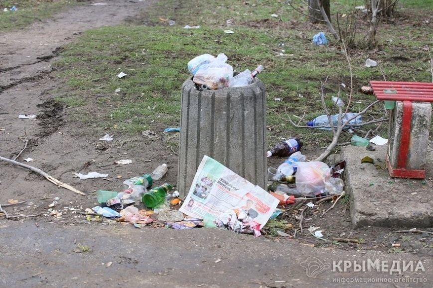 ФОТОФАКТ: Спальные районы и окраины Симферополя утопают в мусоре (фото) - фото 12