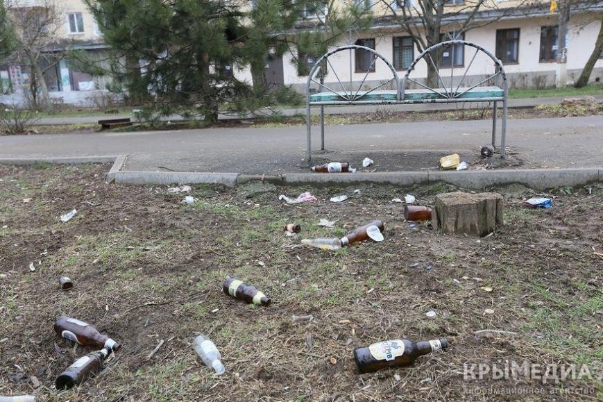 ФОТОФАКТ: Спальные районы и окраины Симферополя утопают в мусоре (фото) - фото 9