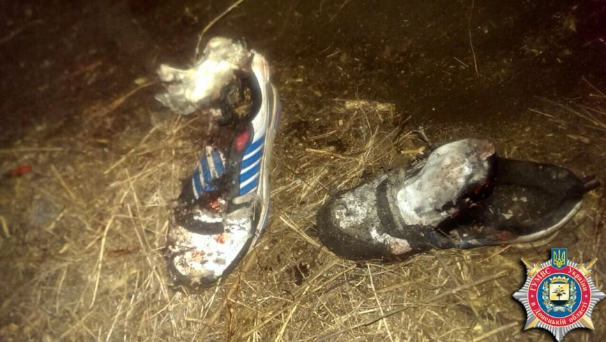 В Артемовске двое детей подорвались на мине, один из подростков погиб на месте. ФОТО, фото-3