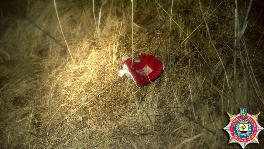 В Артемовске двое детей подорвались на мине, один из подростков погиб на месте. ФОТО, фото-5