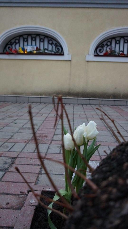 Харьковчане почтили память Бориса Немцова (ФОТО), фото-11