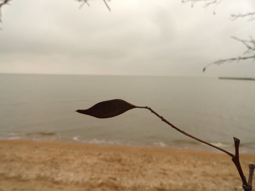 Мариуполь. Море в первый день весны (ФОТОПРОЕКТ) (фото) - фото 2