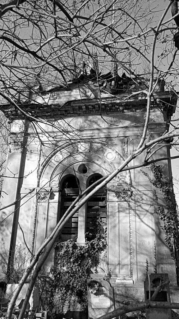 1 березня проведено відкриту екскурсію Ужгородом: «Кладовища Ужгорода» (ФОТО) (фото) - фото 1