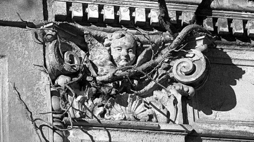 1 березня проведено відкриту екскурсію Ужгородом: «Кладовища Ужгорода» (ФОТО) (фото) - фото 14