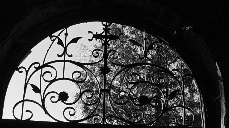 1 березня проведено відкриту екскурсію Ужгородом: «Кладовища Ужгорода» (ФОТО) (фото) - фото 15