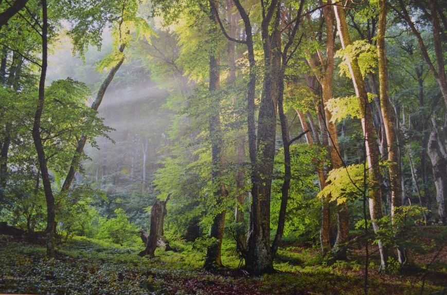 На открывшейся в Симферополе фотовыставке можно полюбоваться крымскими пейзажами (ФОТО), фото-6